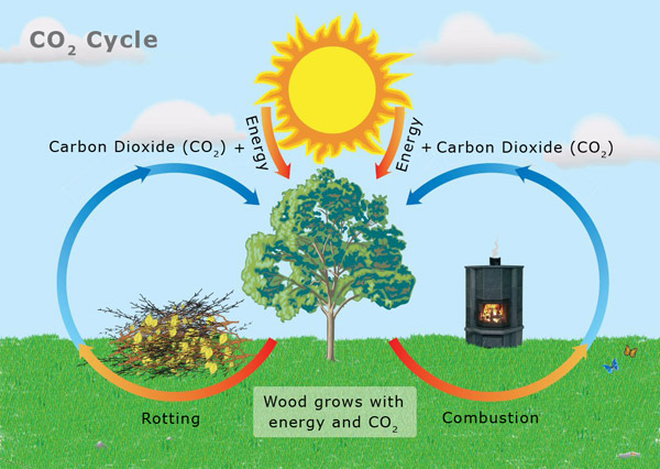 Wood Burning and the Carbon Footprint -