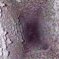 creosote, chimney safety hazard, chimney sweep Hartford